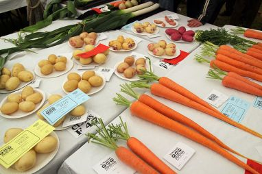 vegetable_show