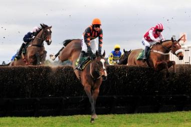 Horse_racing_(3309211069)