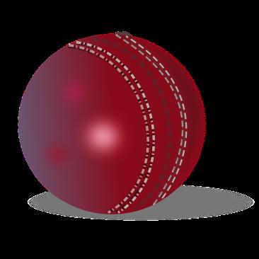 cricket-ball-295206_960_720